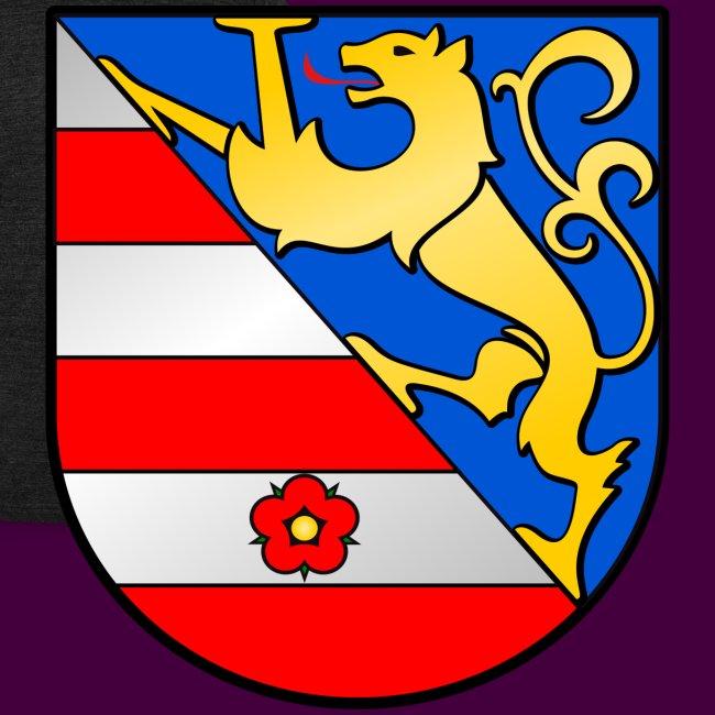 Lienz Wappen