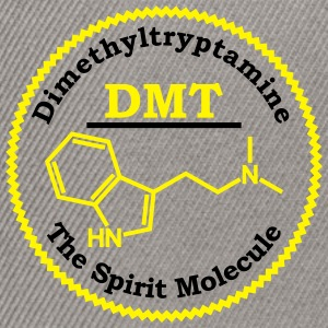 Dimethyltryptamine DMT Tee shirts - Casquette snapback