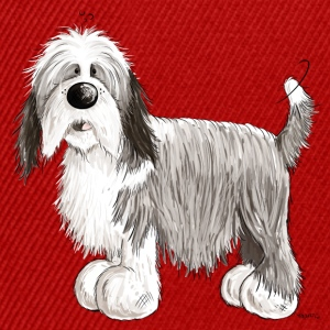 Den Bearded Collie Toppar - Snapbackkeps