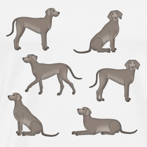 Weimaraner selection Sports wear - Men's Premium T-Shirt