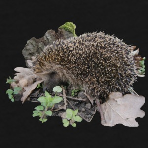 hedgehog - Premium-T-shirt herr