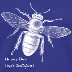 Animal Planet Honig bee - Men's Premium T-Shirt