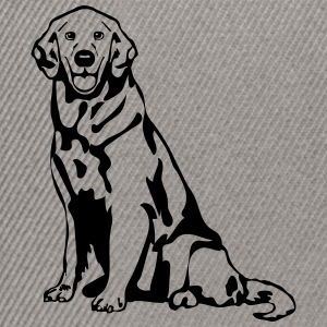 Dog Golden Retriever T-shirts - Snapbackkeps