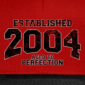 established 2004(fr) Tee shirts - Casquette snapback