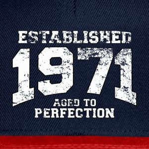 Geburtstag - established 1971 - aged to perfection - Snapback Cap