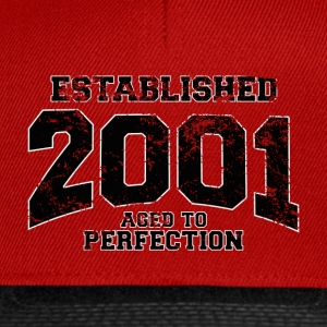 established 2001(fr) Tee shirts - Casquette snapback