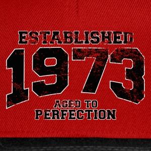 established 1973 - aged to perfection(fr) Tee shirts - Casquette snapback