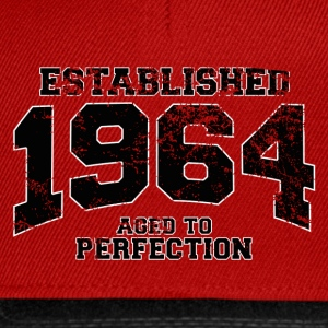 established 1964 - aged to perfection(fr) Tee shirts - Casquette snapback