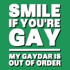 Smile If You're Gay, My Gaydar Is Out of Order T-Shirts - Men's Premium T-Shirt