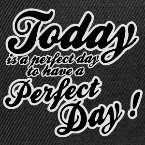 today is a perfect day T-shirt - Snapback Cap