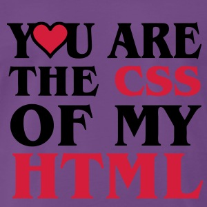 I love CSS / YOU ARE THE CSS OF MY HTML / HEART  HERZ Pullover - Männer Premium T-Shirt