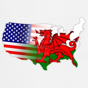 American Welsh Flag Underwear - Cooking Apron