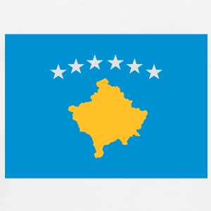 Kosovo flag Teddies - Men's Premium T-Shirt