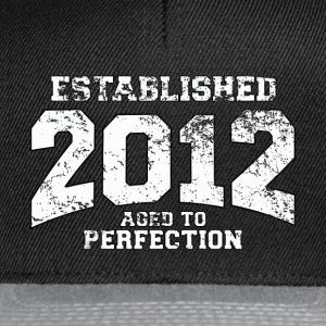 established  - aged to perfection (pl) Koszulki - Czapka typu snapback