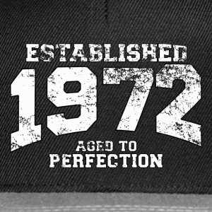 established 1972 - aged to perfection (nl) T-shirts - Snapback cap