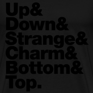 Up & Down & Strange & Charm & Bottom & Top. Pullover - Männer Premium T-Shirt