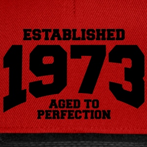 aged to perfection established 1973 (nl) T-shirts - Snapback cap