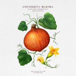 THE PLANTSPLATE FARM - CUCURBITA MAXIMA - Baseballkappe
