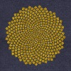 Sunflower Seed, digital gold,  Fibonacci spiral, Golden cut, Golden angle Gensere - Damegenser med båthals fra Bella