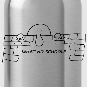 What no school? - Water Bottle