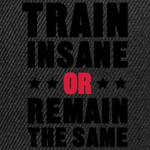 Train Insane Or Remain the Same T-shirt - Snapback Cap