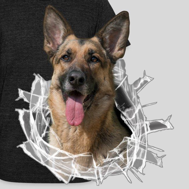 Deutscher Schäferhund im Glas Loch