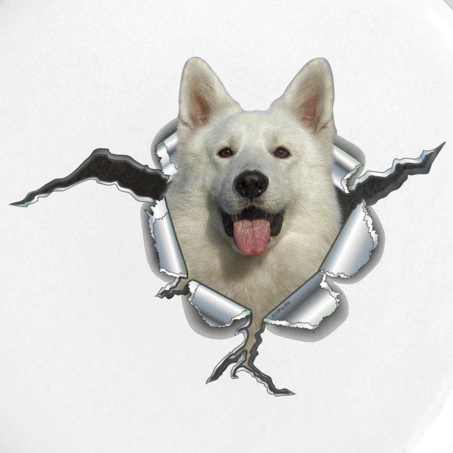 Weißer Schäferhund im *Metall-Loch*
