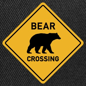 BEAR CROSSING - Snapback Cap