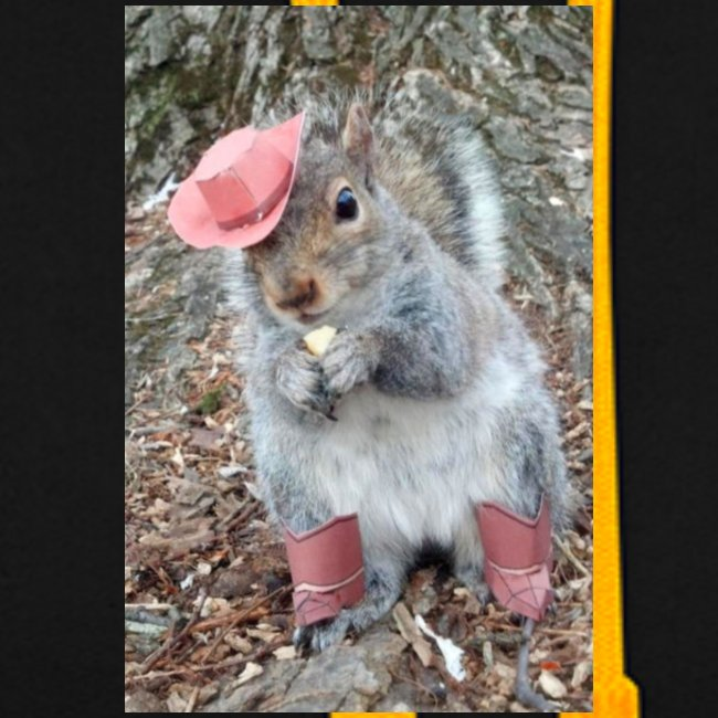 ecureuil deguise