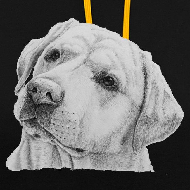 labrador retriever yellow - head