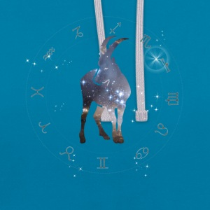 univers capricorne constellation astrologie sternzeic - Sweat-shirt contraste