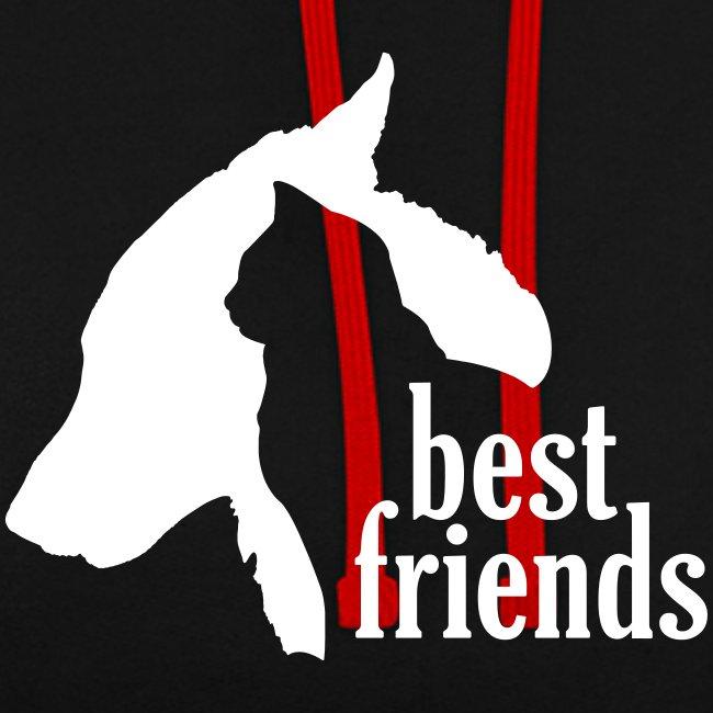 Hunde Katzen Tiere Freundschaft Bündnis Silhouette