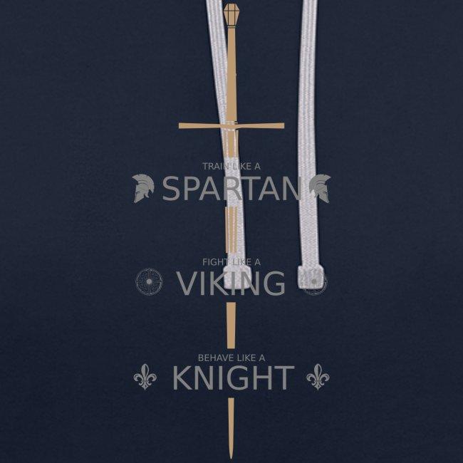 Spartan Viking Knight GRAU