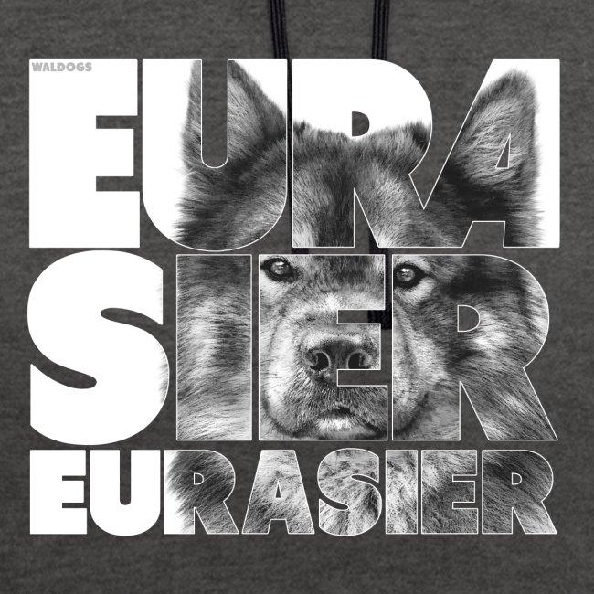 Eurasier V