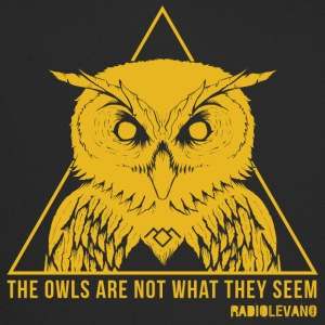 THE OWLS ARE NOT WHAT THEY SEEM - RADIOLEVANO - Trucker Cap