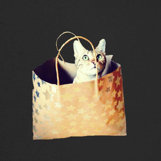 Katze im Sack