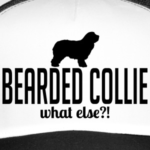 Bearded collie whatelse - Trucker Cap