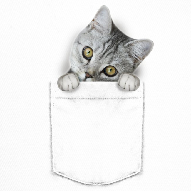 Vorschau: cat pocket - Trucker Cap