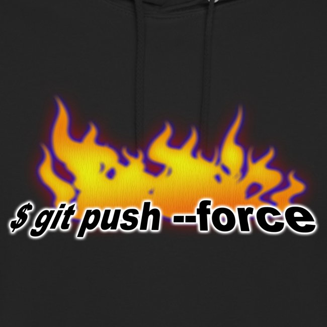git push force