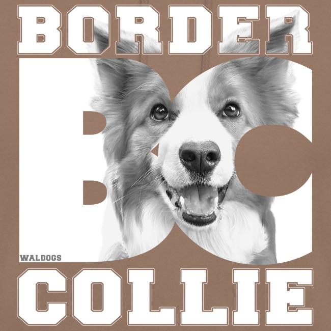 Border BC Collie VII