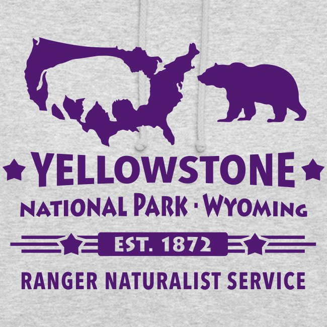 Buffalo Bison Grizzly Yellowstone Nationalpark USA