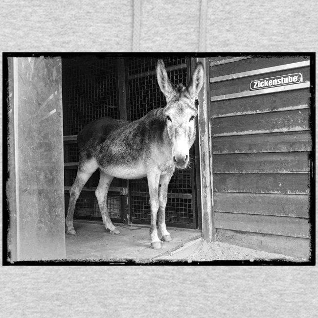 Zickenstube Esel