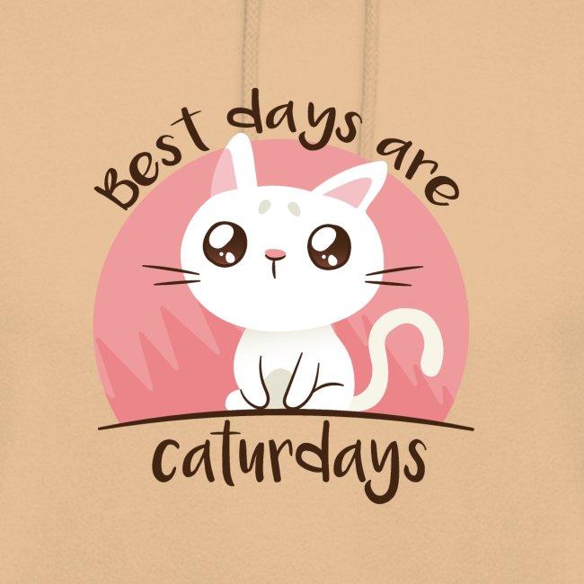 Saturdays - NO - Caturdays