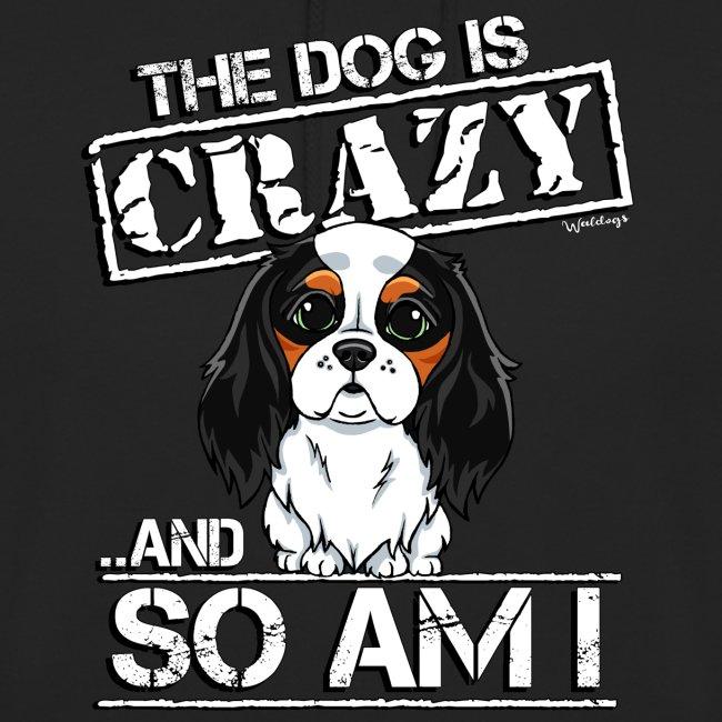 Cavalier Crazy 2