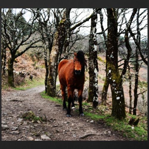 Dartmoor Pony by BlackenedMoonArts - Pudebetræk 45 x 45 cm