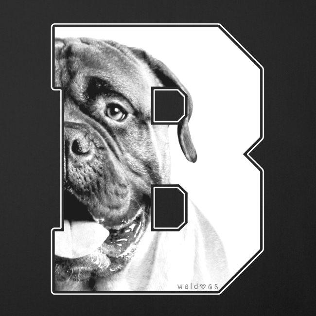 Bullmastiff Big B White