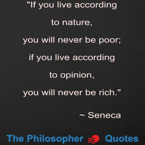 Seneca Living according to opinion Philosopher w1 - Sierkussenhoes, 45 x 45 cm