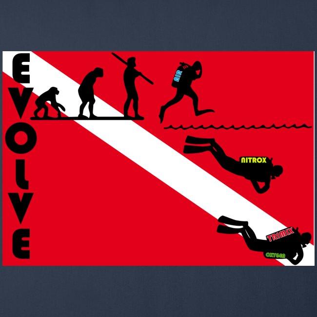 flag_evolve
