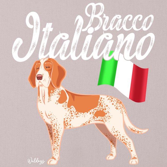 Bracco Italiano Flag