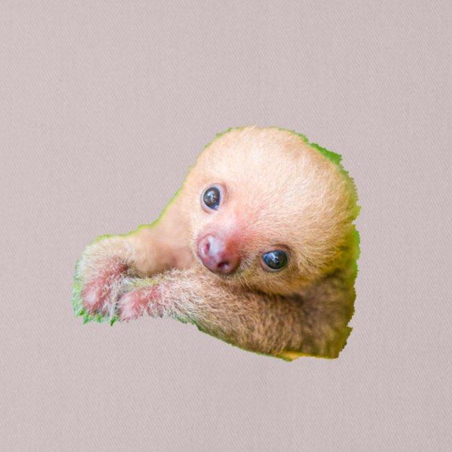International sloth day sale